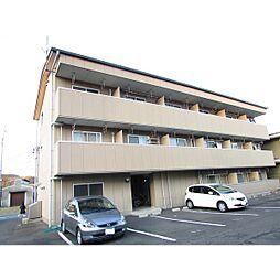 コーポ大桜III[8B号室]の外観
