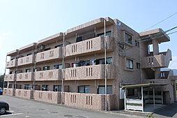 フォレスト・ビュー川崎[101号室]の外観