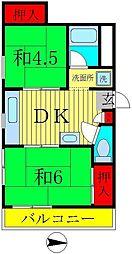 千葉県松戸市新松戸1の賃貸マンションの間取り