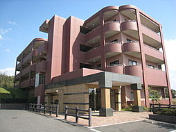 ルシナパ−ク[4階]の外観