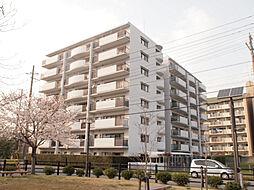 兵庫県姫路市日出町3丁目の賃貸マンションの外観