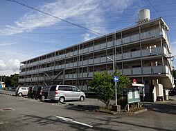 兵庫県三木市別所町朝日ケ丘の賃貸マンションの外観