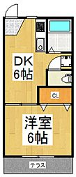 旭ハイツ[1階]の間取り