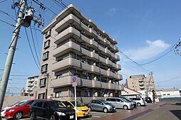 南大野田271ビル[6階]の外観