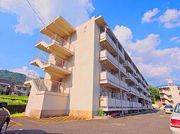 広島県広島市安芸区畑賀2丁目の賃貸マンションの外観