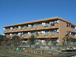 東京都昭島市緑町3丁目の賃貸マンションの外観