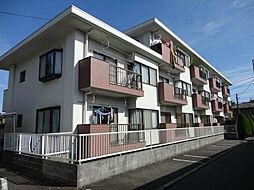 東京都国分寺市東戸倉2丁目の賃貸マンションの外観