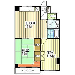 東京都葛飾区亀有5丁目の賃貸マンションの間取り