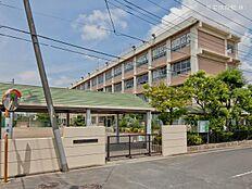 葛飾区立一之台中学校 距離350m