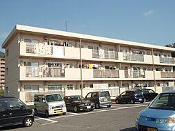 広島県広島市安佐南区八木5丁目の賃貸マンションの外観