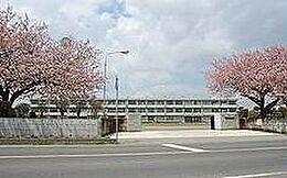 中学校鉾田市立大洋中学校まで1824m