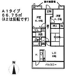 兵庫県西宮市柳本町の賃貸マンションの間取り