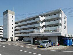 シャトレ鍋島 1[1402号室]の外観