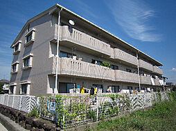 愛媛県松山市今在家2丁目の賃貸マンションの外観
