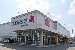 ウエルシア 豊橋平川本町店(544m)