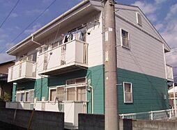 ニューシティ市川[1階]の外観