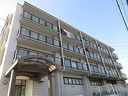 神奈川県横浜市戸塚区鳥が丘の賃貸マンションの外観