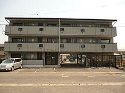滋賀県甲賀市甲南町新治の賃貸マンションの外観