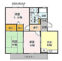 メゾンクレール四番館[203号室]の間取り