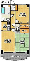 千葉県船橋市海神町2丁目の賃貸マンションの間取り