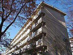 京都府京都市伏見区桃山町大島の賃貸マンションの外観