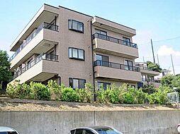 神奈川県川崎市麻生区細山8丁目の賃貸マンションの外観