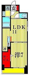 K・Sガーデン 柏の葉キャンパス 1階1LDKの間取り