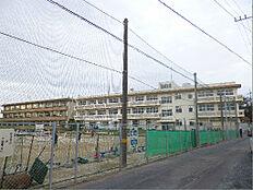 日立市立坂本中学校(1217m)