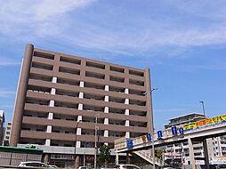摩耶コート壱番館[5階]の外観