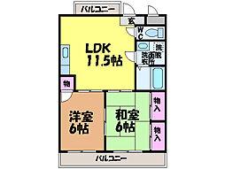 愛媛県松山市森松町の賃貸マンションの間取り