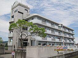 和歌山県紀の川市古和田の賃貸マンションの外観