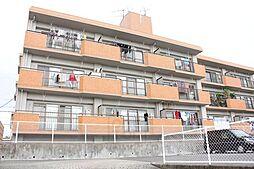 シャロンエース[2階]の外観