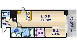ソシオ心斎橋[5階]の間取り