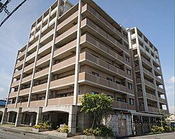 滋賀県近江八幡市西本郷町西の賃貸マンションの外観