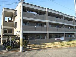 大阪府和泉市唐国町3丁目の賃貸マンションの外観