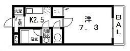 ベルドミール末広III番館[111号室号室]の間取り