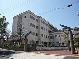 左京山中学校 約750m