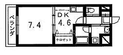 SELENE桂(セレーネ桂)[101号室号室]の間取り