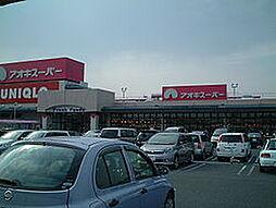 アオキスーパー1283m