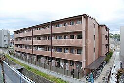 石塚ハイム[1階]の外観