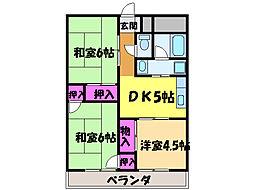 愛媛県松山市衣山4丁目の賃貸マンションの間取り
