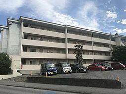 プラチナパレス宇都宮 207号室[2階]の外観