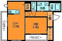 シャーメゾン ラピュタ[1階]の間取り