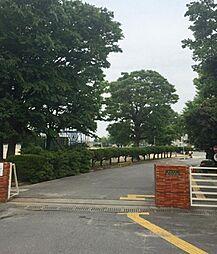 新川小学校