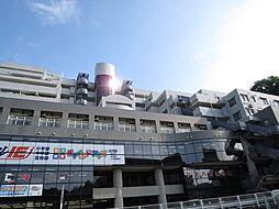 ニューウェルテラス生田[6階]の外観