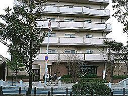 金剛アーバンコンフォート[8階]の外観