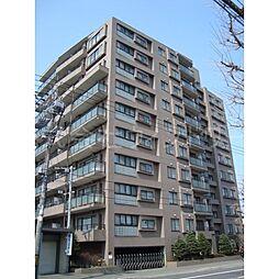 円山南6条シティハウス[10階]の外観