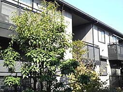 コート・ドールD棟[1階]の外観