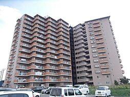 サンライズマンション岩出VIII 1404号[14階]の外観