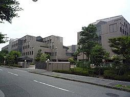 木村様ハイツ[1階]の外観